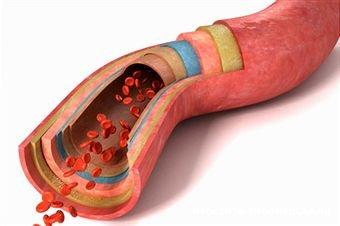 Сдать анализ крови мно в москве Медотвод от прививок Тропарево